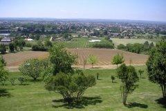 La plantation, mai 2006