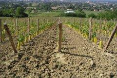 Le travail du sol, mai 2007